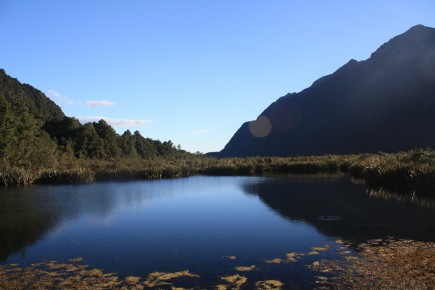 Fiordland National Park NZ 121 e1265596739739 The Southern Belles of New Zealand