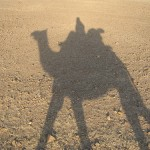 Camel trek shadow in the Thar Desert