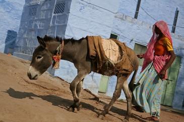 Jodhpur e1270650607772 Majestic Rajasthan