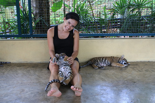 Loving on some baby tiger cubs