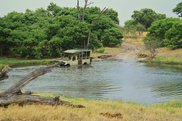 Photo 4 Under African Skies: Moremi Game Reserve