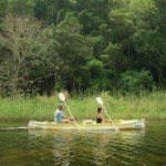 Canoeing through Wilderness Wildlife Reserve