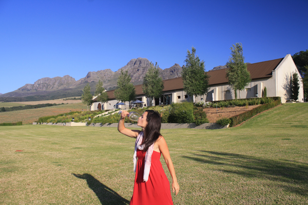 Wine Tasting in Stellenbosch South Africa South Africa's Winning Winelands