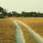 The sand roads of Chobe, just begging for us to get stuck