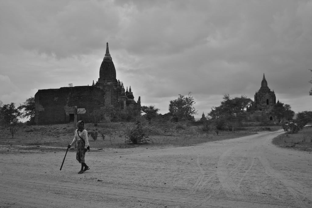 Female Shepherd | Bagan, Burma